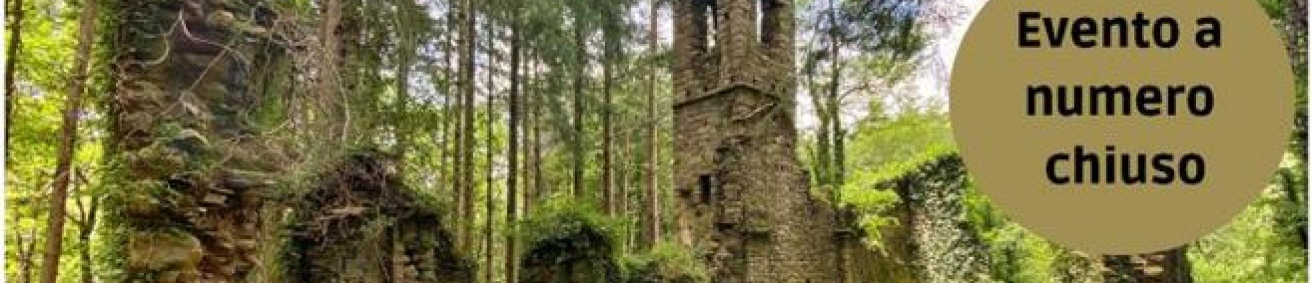 'Il Vermentino a San Martino di Licciorno'