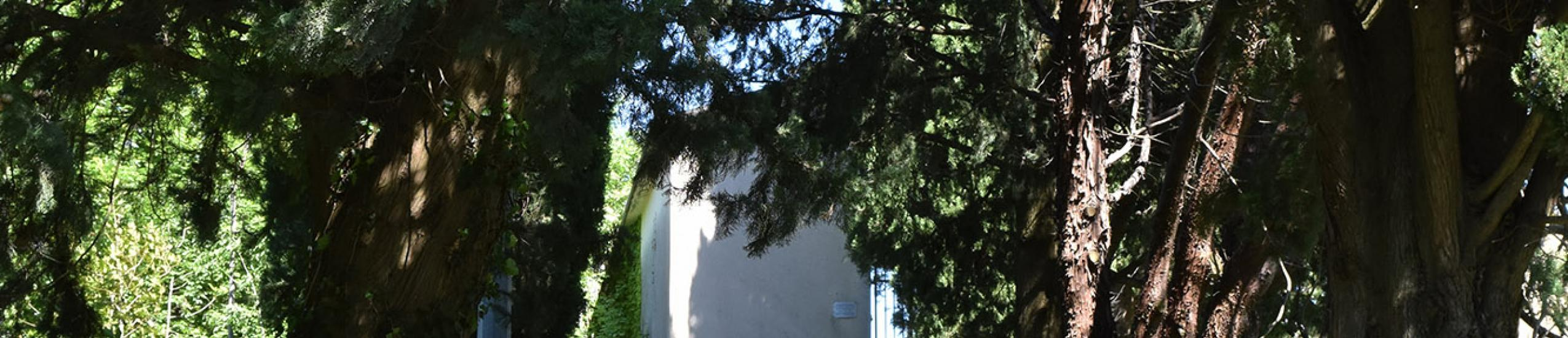Cimitero Coreglia Ligure (0)