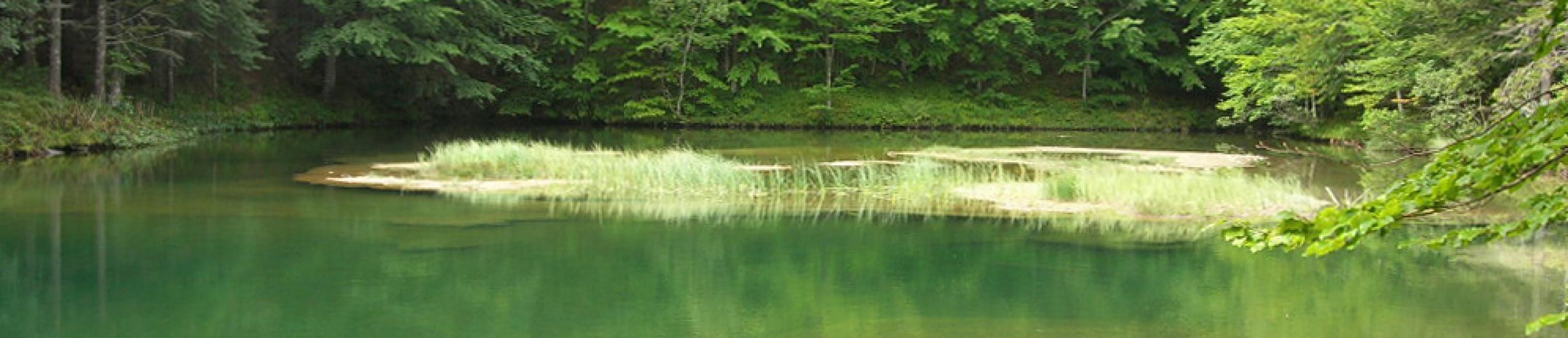 riserva naturale delle agoraie