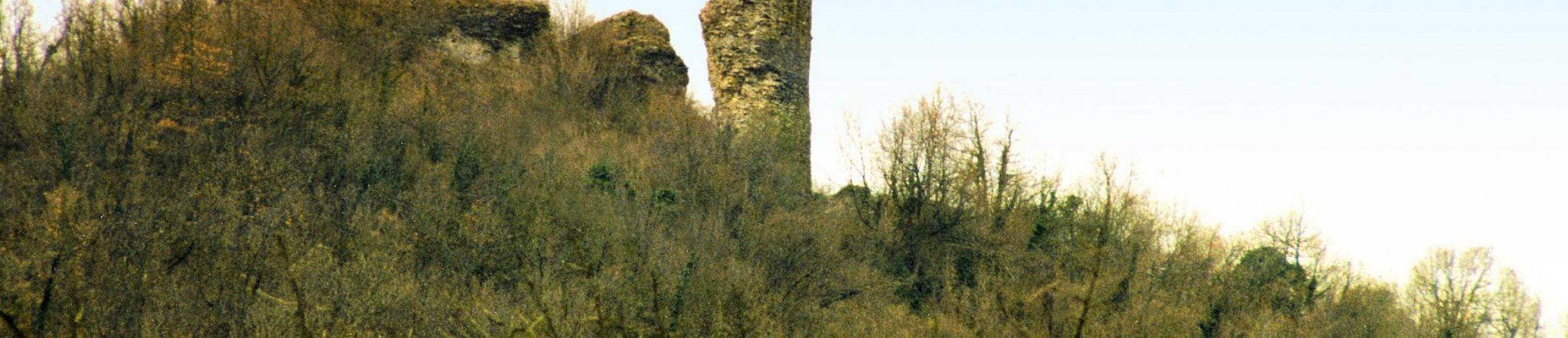 ruderi di castello dei fieschi di Montoggio