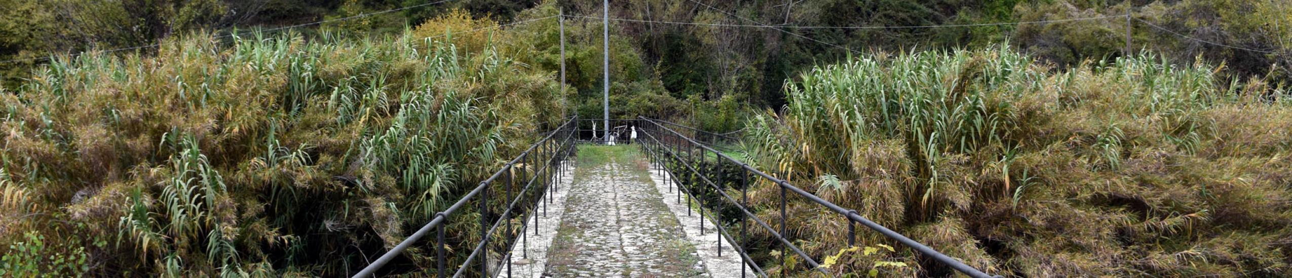 Antico ponte di Frisolino