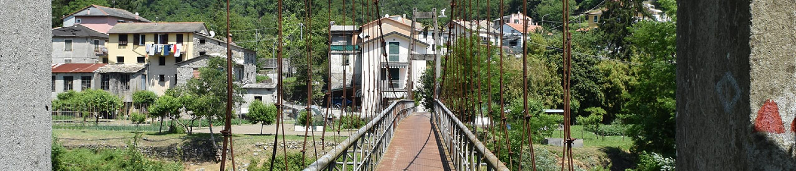 Ponte strallato Ciclovia dell'ardesia (0)