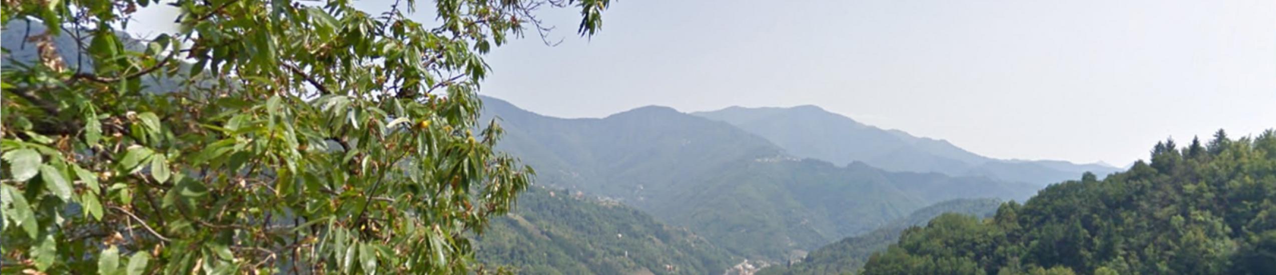 Vista panoramica dalla strada