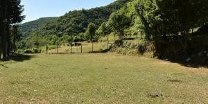 Campo da calcio di Pentema