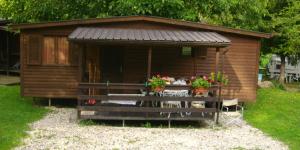 Immagine rappresentativa della struttura