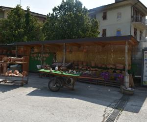 Esposizione di prodotti da giardino