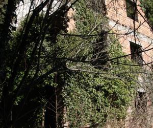 Edifici diruti presso Palazzo Centurione a Gorreto 2