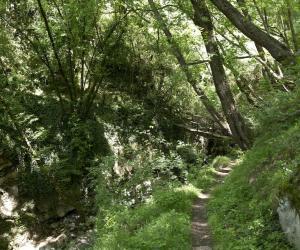 strada per Canate