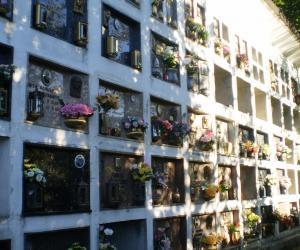 Parte cimitero nuovo