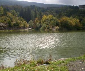 Particolare del Lago