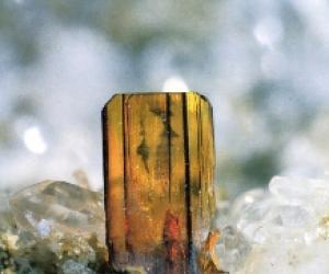 museo mineralogico parma gemma (1)