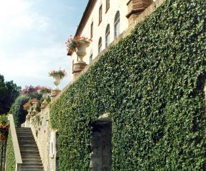 abbazia di san girolamo della cervara e parco (1)