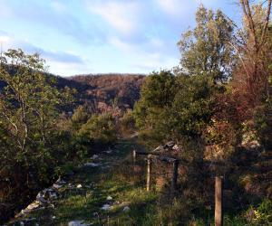 percorso ai resti del castello dei Fieschi