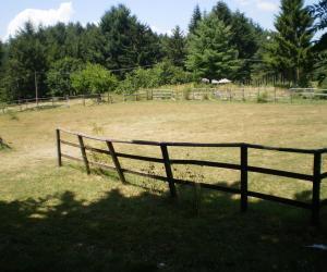 Area per i cavalli