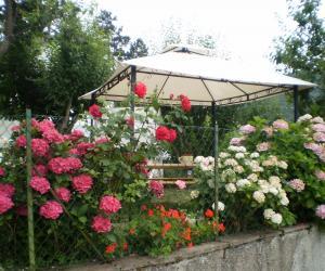 Giardino con gazebo esterno