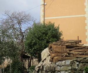 Ca' di Gosita (0)