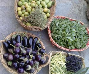 "Agriturismo/ Azienda agricola ""I Pinin"" (2)"